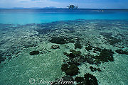 Sea Ventures Dive Resort, a <br /> converted oil platform as seen <br /> from Mabul Island, off Borneo, <br /> Sabah, Malaysia ( Celebes Sea )