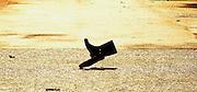 Photo. © Peter Spurrier/ Images.01/03/2004  -  Varsity Boat Race Challenge..Wellington boots, thrown onto Putney Hard. .[Mandatory Credit Peter Spurrier/ Intersport Images] Varsity: Boat race Sunrise, Sunsets, Silhouettes
