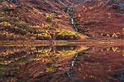 An overcast and windless day in Snowdonia last week but the rich Autumnal colours glowed beautifully in the near mirror-like surface of the mountain lake. Reflections in lakes are such a cliché so forgive me, I was just rather taken with the scene anyway and couldn't help jumping out of the van to make this image.