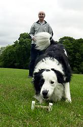 Eddie Sander with his Dogs Jackson and Inka<br /> <br /> 18 June 2004<br /> <br /> Copyright Paul David Drabble<br /> <br /> [#Beginning of Shooting Data Section]<br /> Nikon D1 <br /> <br /> Focal Length: 34mm<br /> <br /> Optimize Image: <br /> <br /> Color Mode: <br /> <br /> Noise Reduction: <br /> <br /> 2004/06/18 09:35:23.3<br /> <br /> Exposure Mode: Manual<br /> <br /> White Balance: Auto<br /> <br /> Tone Comp: Normal<br /> <br /> JPEG (8-bit) Fine<br /> <br /> Metering Mode: Center-Weighted<br /> <br /> AF Mode: AF-S<br /> <br /> Hue Adjustment: <br /> <br /> Image Size:  2000 x 1312<br /> <br /> 1/200 sec - F/8<br /> <br /> Flash Sync Mode: Not Attached<br /> <br /> Saturation: <br /> <br /> Color<br /> <br /> Exposure Comp.: 0 EV<br /> <br /> Sharpening: Normal<br /> <br /> Lens: 17-35mm F/2.8-4<br /> <br /> Sensitivity: ISO 200<br /> <br /> Image Comment: <br /> <br /> [#End of Shooting Data Section]