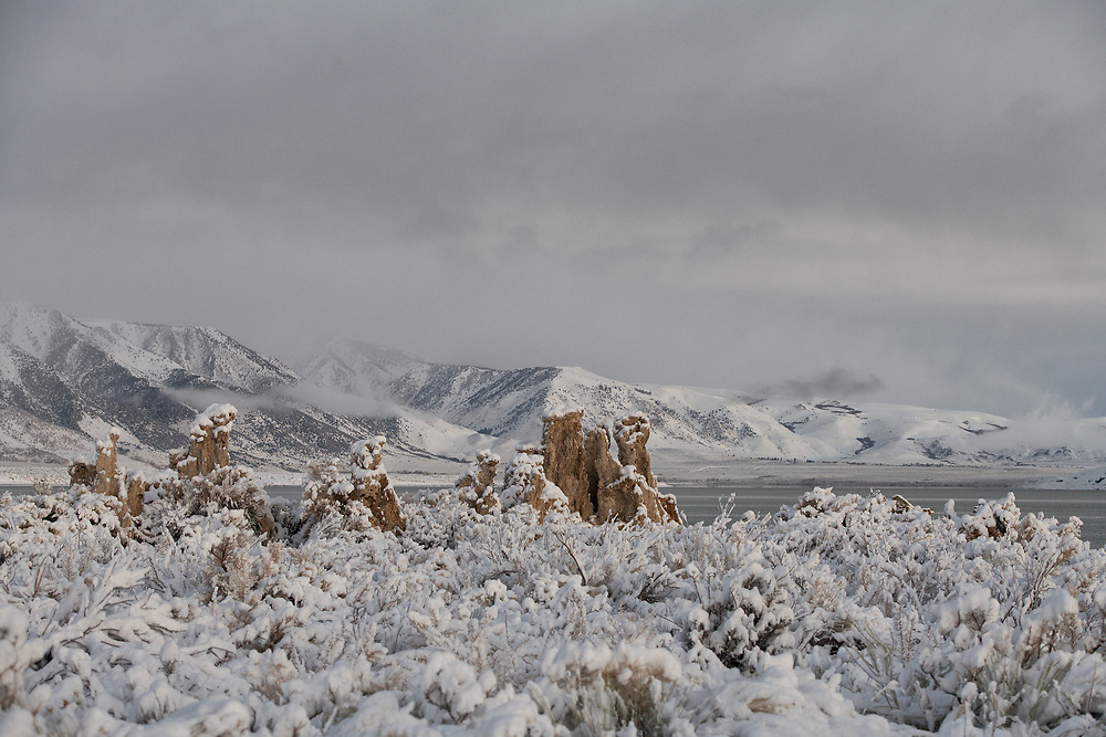 A fresh snow fall covers the tufa formations and the rabbit brush and sage along the shores of Mono Lake