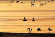 Vietnam Images-landscape-Nature-sunset-Hue phong cảnh việt nam hoàng thế nhiệm Phong cảnh Vietnam