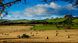 Autumn light in the Scottish Borders near Broughton<br /> <br /> (c) Andrew Wilson | Edinburgh Elite media