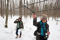 Researchers collecting data on bison. Bialowieza, Poland. February 2009