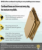 Sustainability Infographics