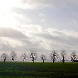 Paisagem (Cenário) fotografado em Rothenburg ob der Tauber, Alemanha -  Europa. Registro feito em 2012.<br /> <br /> <br /> ENGLISH: Landscape photographed in Rothenburg ob der Tauber, Germany - Europe. Picture made in 2012.