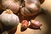 Close up selective focus photograph of Italian Pink Garlic lit by window light