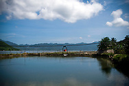 Landscape of a pond with mountains in background. Nha Trang, Khanh Hoa area, Vietnam, Asia.