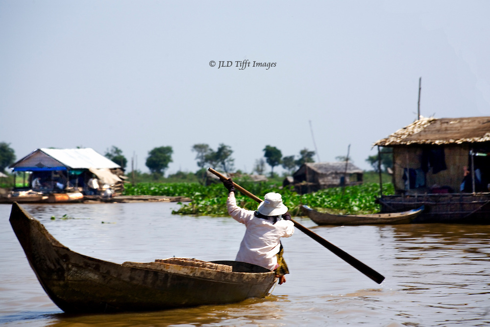 Boat trip by outboard on Tonle Sap Lake to visit floating fishing villages. Woman paddles homeward in the bow of her dugout canoe.