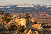 There was a lot to see in this view from Castle Gardens outside of Ten Sleep. Hoodoos and toadstools, red rock canyons, and the snow-capped Bighorn Mountains all lit up in the golden evening sunlight.