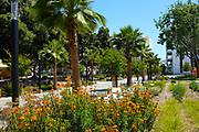 Campus Quad Area at California State University Fullerton