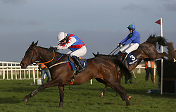 Youcantcallherthat ridden by Denis Hogan (left) races clear of the last on the way to winning the John & Chich Fowler Memorial EBF Mares Steeplechase during The Easter Tuesday Meeting at Fairyhouse, Ratoath.