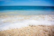 The ocean's edge at Playa Arbolito, Cabo Pulmo, Mexico.
