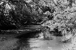 mid-late 1970's, Kickapoo Creek north east of Heyworth Illinois<br /> <br /> <br /> Archive slide, negative and print scans.