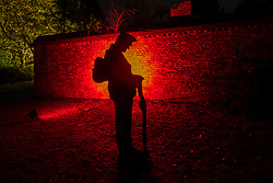 © Licensed to London News Pictures. 11/11/2018. LONDON, UK. A tribute to the fallen soldiers on Armistice Day at The Enchanted Woodland which has opened to the public again at Syon House in West London.  An illuminated trail takes visitors through gardens designed by Capability Brown, round an ornamental lake and ends at the spectacular Great Conservatory.   Photo credit: Stephen Chung/LNP