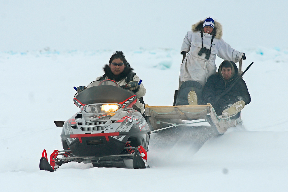 Barrow, Alaska. Little Kuupak crew using snowmachines to go back and forth between the camp on the lead and the safe ice campo. May 2007.