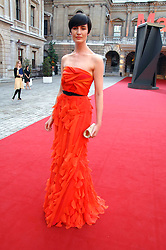 ERIN O'CONNOR at the Royal Academy of Art Summer Exhibition Preview Party on 4th June 2008.<br /><br />NON EXCLUSIVE - WORLD RIGHTS