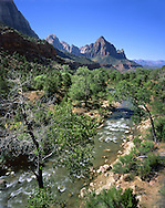 The Virgin River As It Flows Through Zion Valley, Zion National Park, Utah