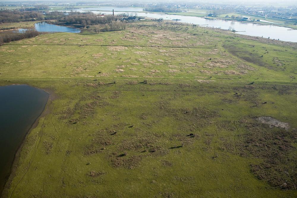 Nederland, Utrecht, Rhenen, 11-02-2008; grazende Galloway runderen in Blauwe Kamer, nieuwe natuur aan de Neder-Rijn; het rivieroeverreservaat is ontstaan door het afgraven van de zomerdijk met als gevolg dat het natuurgebied regelmatig overstroomt; er ontwikkelen zich moerassen en ooibos (wilgen), de runderen en Koniks paarden zorgen voor de begrazing; onderdeel van 'het Utrechts Landschap', het gebied is genoemd naar de voormalige steenfabriek (met schoorsteen aan de horizon); natuurreservaat, rivieroeverreservaat, natuurpark..luchtfoto (toeslag); aerial photo (additional fee required); .foto Siebe Swart / photo Siebe Swart