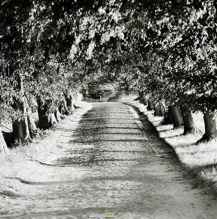 A dusty road in Herthaburg, near Sassnitz on the island of Rugen, northern Germany