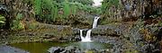 Waterfall in a forest, Seven Sacred Pools, Hana Coast, Maui, Maui County, Hawaii, USA