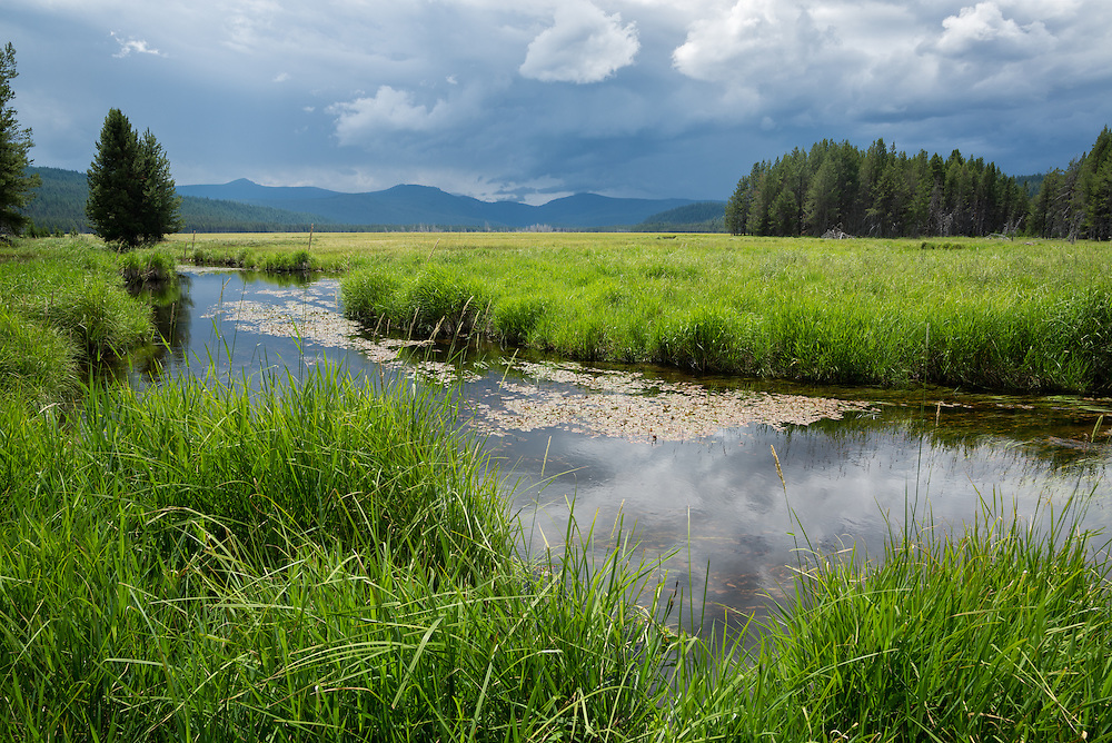 Big Marsh, Oregon.