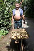 Man with wheelbarrow of new potatoes