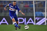 Angelo Palombo Sampdoria <br /> Roma 16-03-2015 Stadio Olimpico Football Calcio Serie A 2014/2015 AS Roma - Sampdoria . Foto Andrea Staccioli / Insidefoto