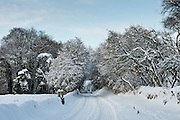 Snow-covered lane in Windrush valley at Swinbrook, The Cotswolds, Oxfordshire, UK..