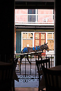 20 SEPTEMBER 2006 - NEW ORLEANS, LOUISIANA: A mule pulls a Handsome Cab up Chartres Street in New Orleans. Photo by Jack Kurtz / ZUMA Press