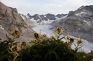 La testata della valle del forno con il suo ghiacciaio.