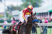 May 3, 2019: 145th Kentucky Oaks at Churchill Downs. McKinzie ridden by Mike Smith and trained by Bob Baffert wins the 2019 Alysheba (G2) stake