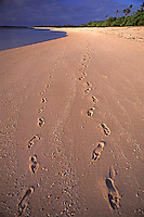 (Nearly) Deserted Beach..Shot in Kingdom of Tonga