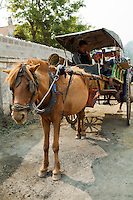 Naung Shwe Horse Cart - like most Burmese towns horse carts are still ubiquitous for transporting goods and usually also serve as slow taxis.