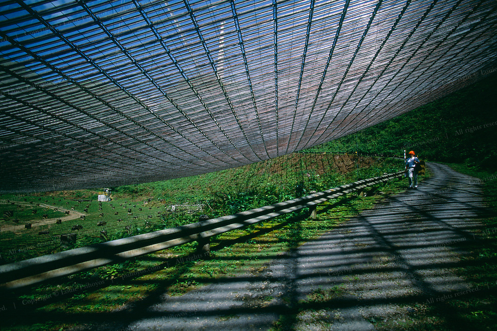 Under the dish at Arecibo Observatory in Arecibo, Puerto Rico. The dish, comprised of 38,778 panels of mesh aluminium, is completely suspended. Pictured here is journalist Pierre Barthelemy.