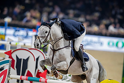 Mertens Thomas, BEL, Ux van de Canthoeve<br /> Jumping Mechelen 2019<br /> © Hippo Foto - Dirk Caremans<br />  27/12/2019