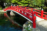 Wakutama Pond at Sengen Taisha Shrine, Formed by the melted snow of Mount Fuji, this pond has been designated a special natural treasure. The elegant, vermillion arched bridge hovers over the spring that flows from the foot of Kantate Knoll. In former times, those climbing Mount Fuji purified themselves in this sacred spring.