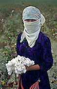 Ashgabat, Turkmenistan, October 1997..A young girl picks cotton in the fields outside the Turkmen capital. Poverty-stricken, but rich in oil and gas resources, this Central Asian former Soviet republic is ruled by the autocratic President Saparmurat Niyazov, or Turkmenbashi as he has renamed himself..............Hollandse Hoogte