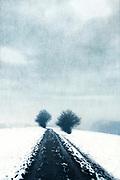 Path through snowy fields
