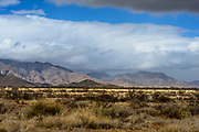 Dragoon Mountains birding photographs Arizona, USA