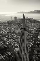 Transamerica Pyramid & Golden Gate Bridge (monochrome)