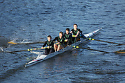 Crew: 20   Nottingham University BC   NGU-DEMPSEY   4+ Band 2<br /> <br /> Head of the Trent 2018<br /> Division 3<br /> <br /> To purchase this photo, or to see pricing information for Prints and Downloads, click the blue 'Add to Cart' button at the top-right of the page.