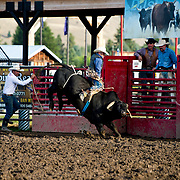 Clay Applegate on Red Eye Rodeo bull Speedy at the Darby Broncs N Bulls event Sept 7th 2019.  Photo by Josh Homer/Burning Ember Photography.  Photo credit must be given on all uses.