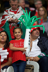 LILLE, FRANCE - Friday, July 1, 2016: A young Wales supporter with an inflatable leek in the stands ahead of the UEFA Euro 2016 Championship Quarter-Final match against Belgium at the Stade Pierre Mauroy. (Pic by Paul Greenwood/Propaganda)