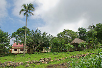 A traditional thatched-roof bamboo hut beside a modern house on Atauro Island, Timor-Leste (East Timor)