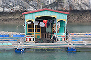 Fixing nets in a floating house with and marine aquaculture in front of a Limestone karst in Ha Long Bay, near Cat Ba Island, Vietnam