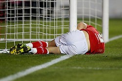 Matt Smith of Bristol City collides with the post - Photo mandatory by-line: Rogan Thomson/JMP - 07966 386802 - 29/01/2015 - SPORT - FOOTBALL - Bristol, England - Ashton Gate Stadium - Bristol City v Gillingham - Johnstone's Paint Trophy Southern Area Final Second Leg.