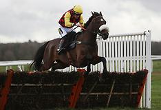 Newbury Racecourse - 16 Jan 2019