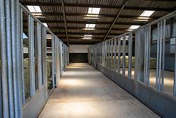 Het Trichelhof, stallen jonge paarden<br /> het Trichelhof - Eindhout 2020<br /> © Hippo Foto - Dirk Caremans<br />  13/06/2020