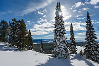 I found these 3 fir trees overlooking Taggart Lake while snowshoeing in Grand Teton National Park. I was trying to find a shorter trail down to the lake that was shown on the map. But nobody else had gone this way and I soon realized breaking trail in snow this deep was a lot of work, so I returned the way I came in.